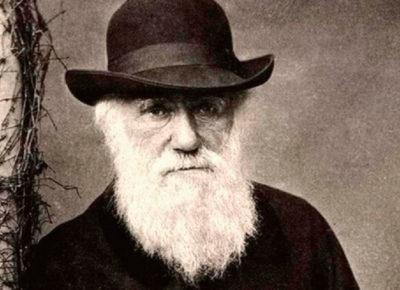 Conheça o segredo de Darwin – e outros gênios – para produtividade e criatividade
